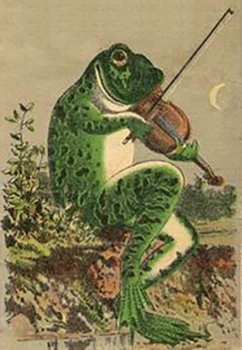 This is a picture of a frog playing a violin